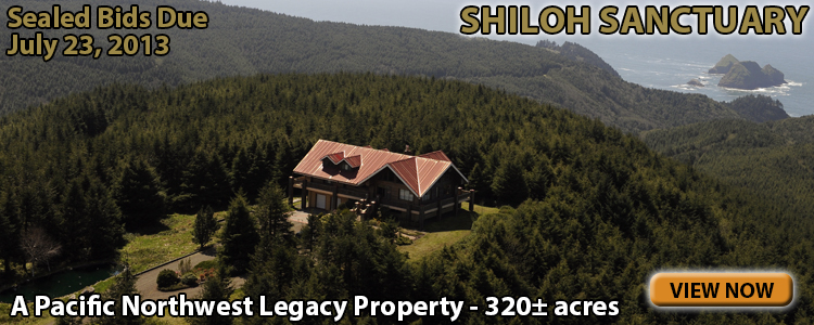 Shiloh Sanctuary Auction #1303