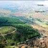 Property 3<br> Seamark Timber Tract with Ocean View, by Seaside<br> Clatsop County, Oregon